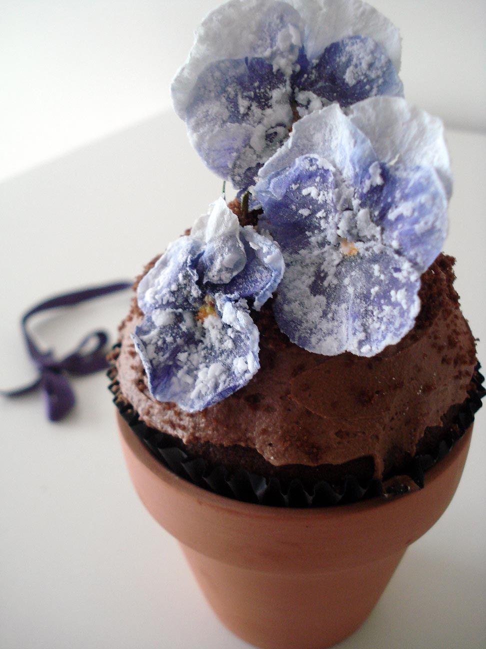 cupcake maceta