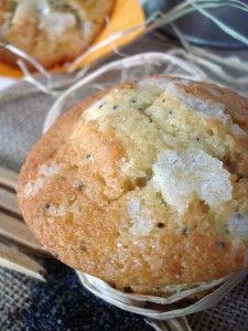 muffins_amapola